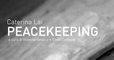 Mostra Peacekeeping di Caterina Lai