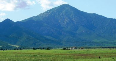 Monte Arcosu, Oasi del WWF